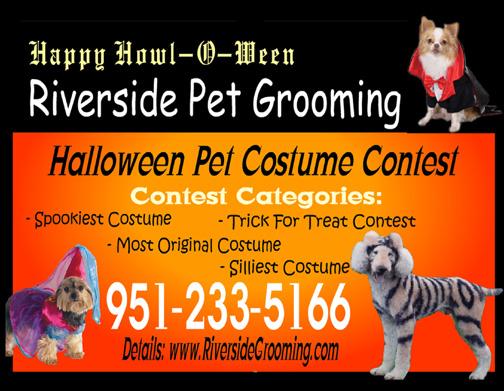 halloween pet costume parade contest - Pet Halloween Photo Contest